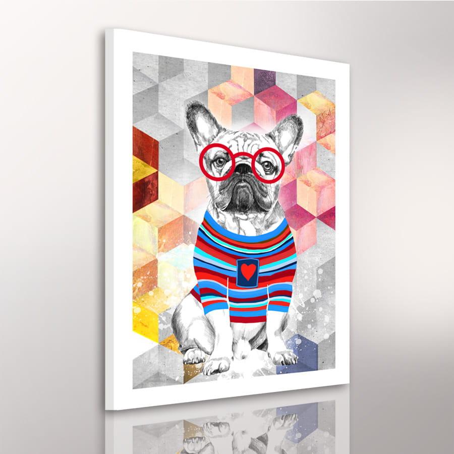 Obraz/ grafika na płótnie Buldog francuski w sweterku 70x50x2 cm 22